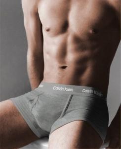 Мужское белье Calvin Klein 365 серый-серый